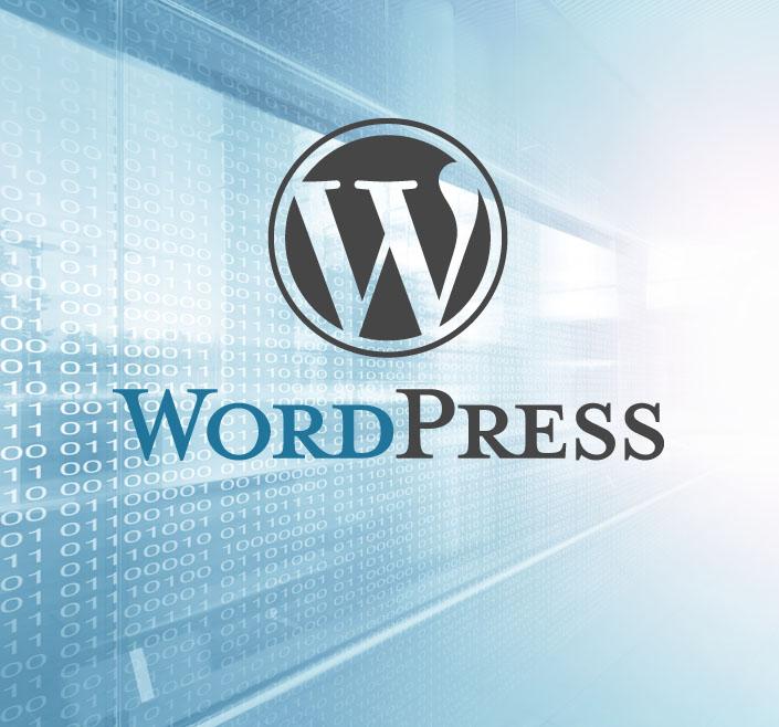 WordPress Logo vor hellen Hintergrund mit digitalen Zahlen.